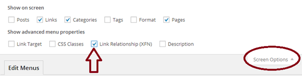 screenshot show to enable some screen options in the wordpress admin dashboard